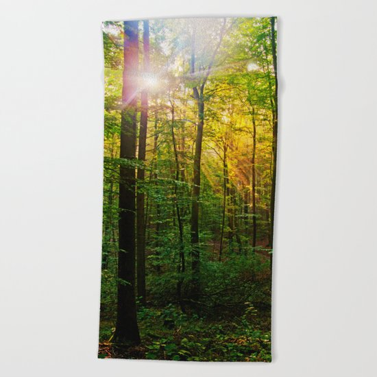 Morning sun in the forest Beach Towel
