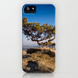 Crooked Tree in Elbe Sandstone Mountains iPhone Case