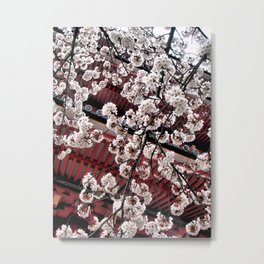 Destiny (Japan) Metal Print