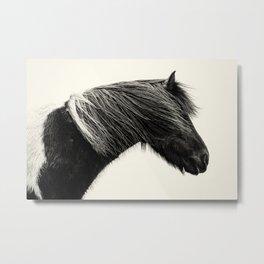 Sýn - An Icelandic Horse Metal Print
