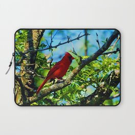 Red Cardinal Laptop Sleeve