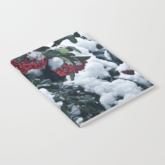 Winter and snow Notebook