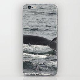 HumpBack Whale Tail iPhone Skin