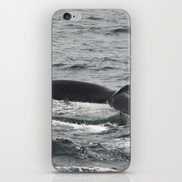 HumpBack Whale Tail iPhone Skin