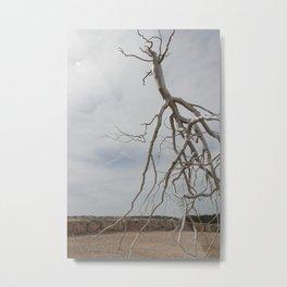 Alian Tree at The Israel Museum Jerusalem Metal Print