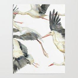 Storks Flying Away, The Last Day of Summer, Flock of Birds Poster