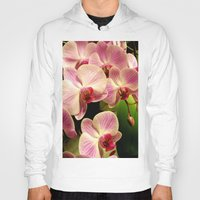 orchid Hoodies featuring orchid by Bitifoto