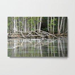 Water reflection Metal Print