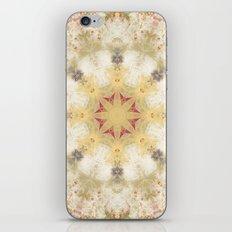 Diaspora 2 iPhone & iPod Skin