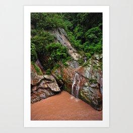 Peruvian Amazon I Art Print