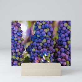 Bunches of Grapes  Mini Art Print