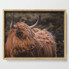 Highland Coo Serving Tray