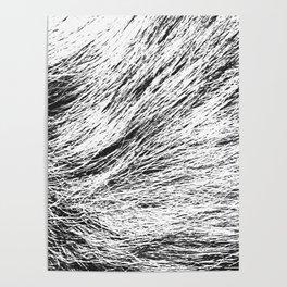 Warm wool Poster