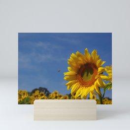 Summer Sunflower Soloist with backup chorus Mini Art Print