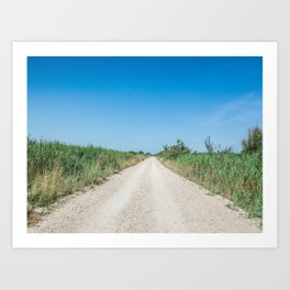 Dirt road in the Regional Natural Park of Camargue Art Print