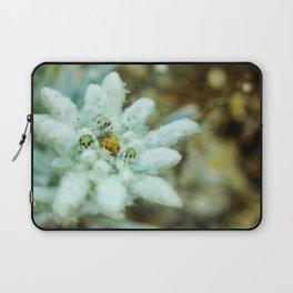 The Heart of Pirin - Leontopodium alpinum Laptop Sleeve