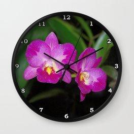 Magnificent Magenta Orchid - Ctna Capri Wall Clock