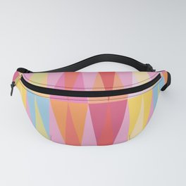 Party Argyle on Pink Fanny Pack