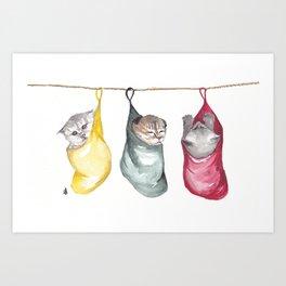 Kittens in socks Art Print