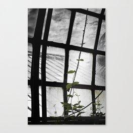 and i will climb Canvas Print