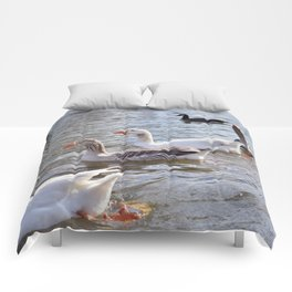 Aquatic Feathered Friends (1) Comforters
