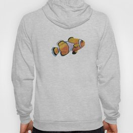 Lonely Clownfish Hoody