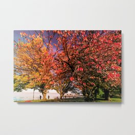 Autumnal Lifestyle In Evian - France Metal Print
