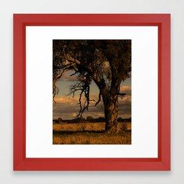 Once... Framed Art Print