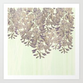 Wisteria - a thing of beauty is a joy forever Art Print