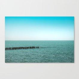 Nature photo - horizon Canvas Print