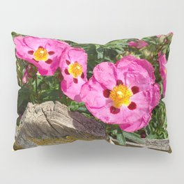 Picket fence and pink flowers Pillow Sham