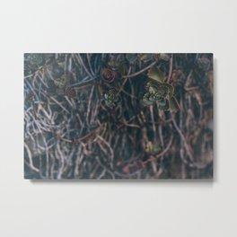 Muted Metal Print