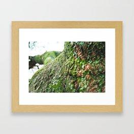 Kigali Framed Art Print