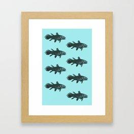 Flock of Fish Framed Art Print