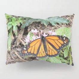 Monarch Butterfly on Pink Flower Pillow Sham
