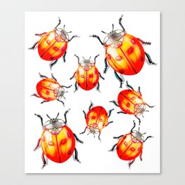 Goldn LadyBirds Canvas Print