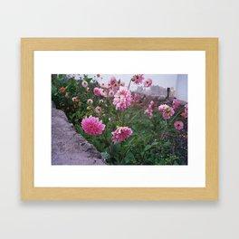 Flowers in Tafí Framed Art Print