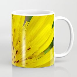 Salsify Flower Coffee Mug