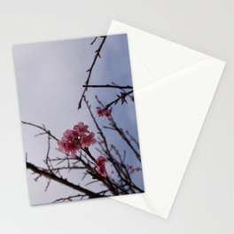Petite Stationery Cards