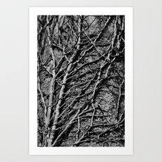 White Tree Detail Art Print