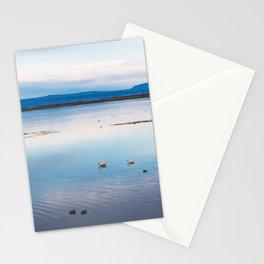 Flamingoes on El Calafate, Patagonia, Argentina Stationery Cards