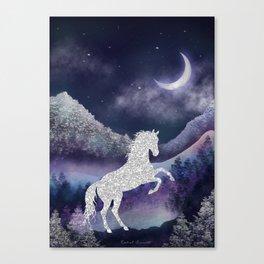 Moonlit Wild Horse Canvas Print