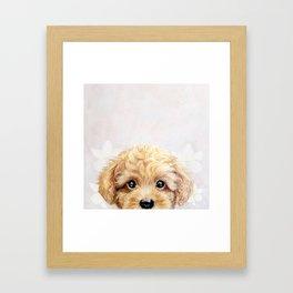 Toy poodle Dog illustration original painting print Framed Art Print