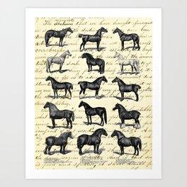 1895 Vintage Horse study Art Print