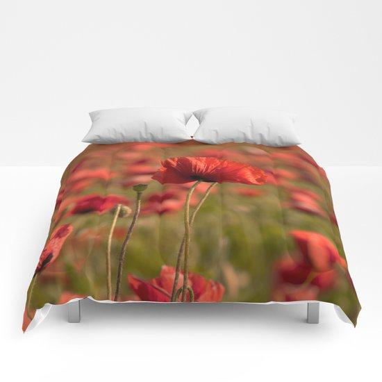 Poppy poppies summer field Comforters