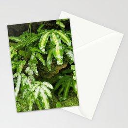 The Fernery Stationery Cards