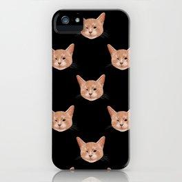 Kiki, the pretty blind cat iPhone Case