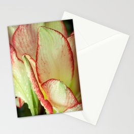 Abstract Iris Stationery Cards
