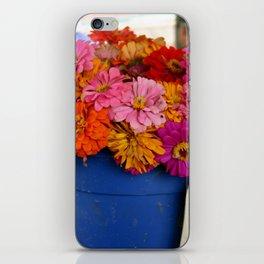 Dozen Zinnias iPhone Skin