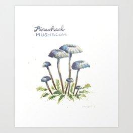 Pinwheel Mushrooms Art Print